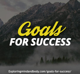 goals for success