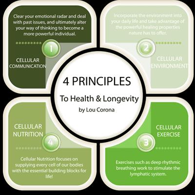 lous 4 principles